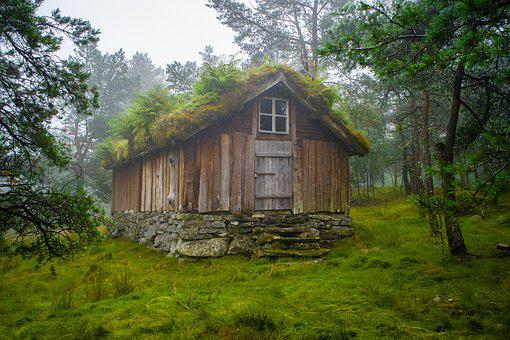 Wooden House, Forest, Cabin, Cottage, House, Wooden