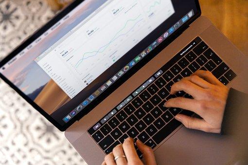 Laptop, Work, Coffee, Chart, Man, Freelancer, Freelance