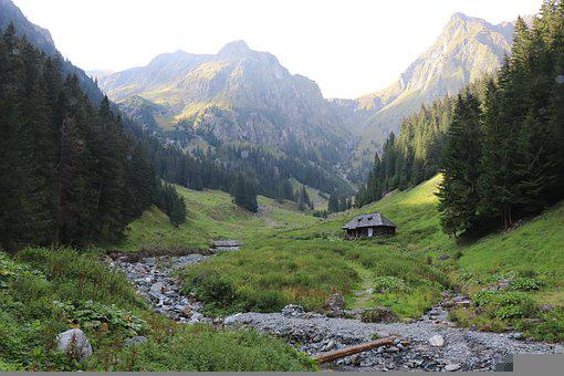 Peak, Mountain Peak, Nature, Forest, Stream