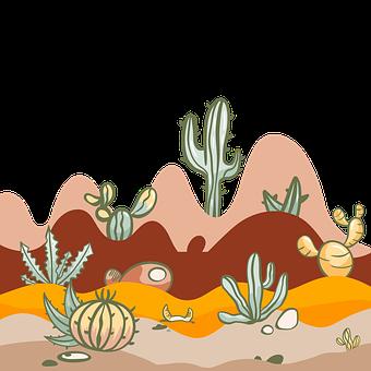 Cactus, Desert, Plant, Cacti, Dry, Succulent, Landscape