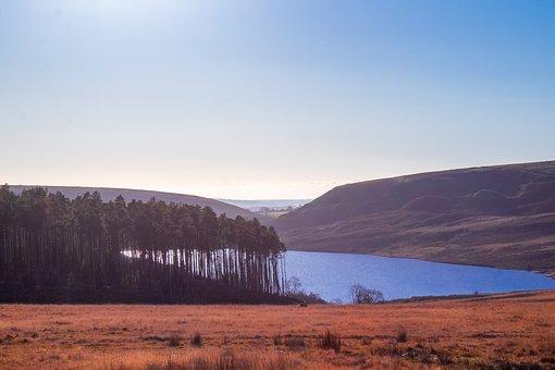 Reservoir, Forest, Hills, Trees, Dam, Landscape, Nature