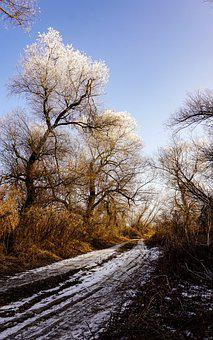 Transylvania, Nature, Winter, Landscape, Snow, Frost