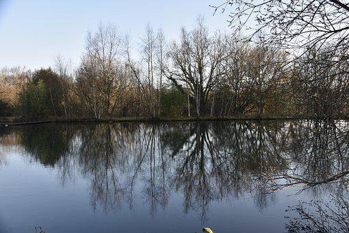 Panoramic Views, Tree Reflection On Water, Trees