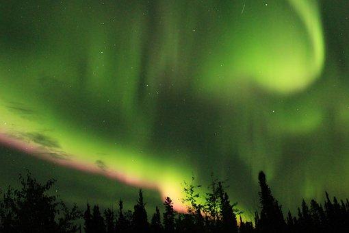 Aurora Borealis, Trees, Silhouettes, Tree Silhouettes