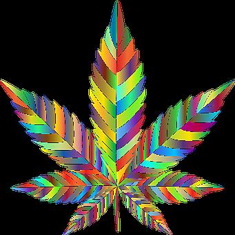 Marijuana, Leaf, Drugs, Leaves, Cannabis, Weed, Pot