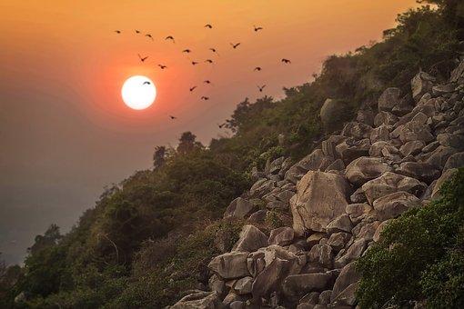 Rocks, Cliffs, Sunset, Dusk, Twilight, Migratory Birds