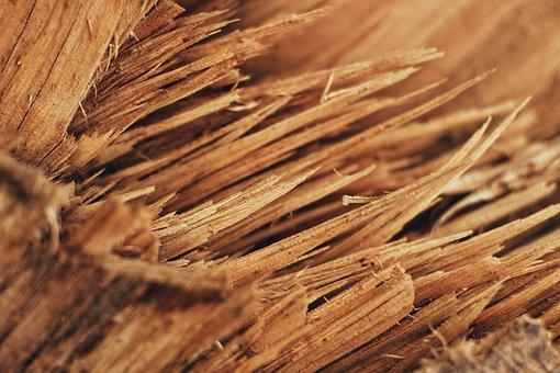 Wood, Wood Cut, Splinter, Firewood, Trunk, Nature