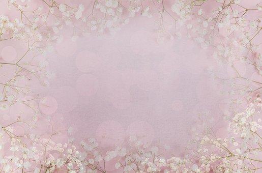 Floral Background, Flowers, Flower, Romantic, Love