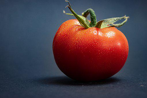 Tomato, Red, Dew, Water Droplets, Moist, Wet, Fresh