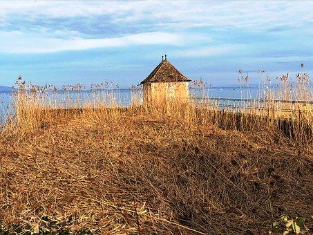 House, Grass, Lake, Bathhouse, Lake Constance