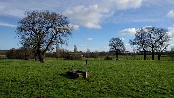 Aachen, Soers, Meadow, Pasture, Green, Landscape