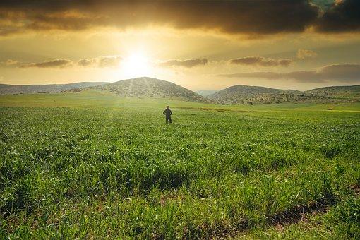 Landscape, Sad, Nature, Alone, Freedom, Sunset, Success