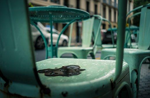 Chair, Rain, Outdoors, Cafe, Street, Wet, Empty, Seat