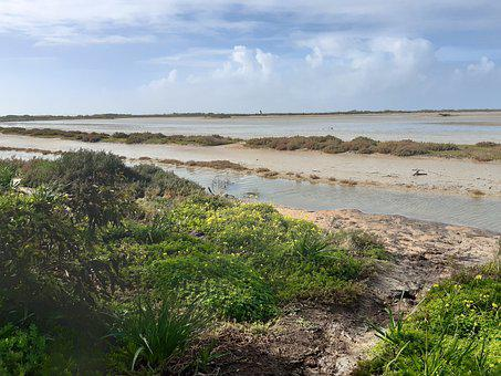 Tide, Marsh, Water, Brook, Sky, Calm, Sun, Summer