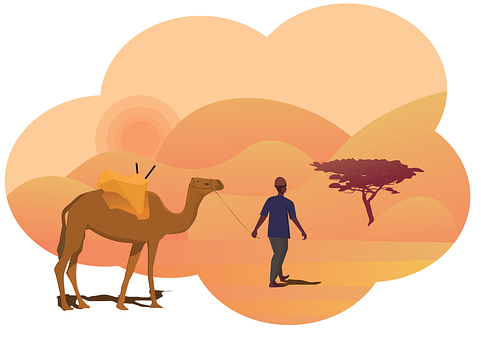 Sunset, Desert, Camel, Sand, Landscape, Nature, Travel