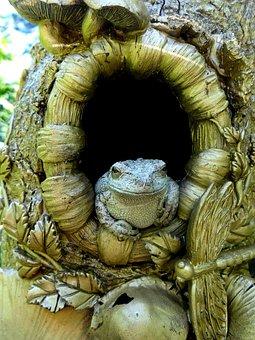 Frog, Toad, Amphibian, Nature, Wildlife