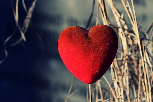Heart, Love, Ornament, Tender, Mystical, Symbol
