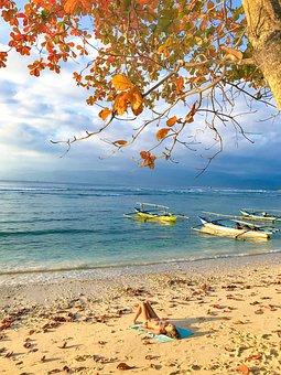 Beach, Sea, Ocean, Sky, Water, Sand, Coast, Summer