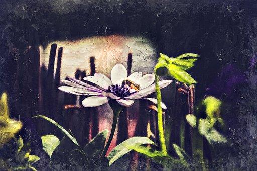 Flower, Bee, Photo Art, Honey Bee, Insect, Animal