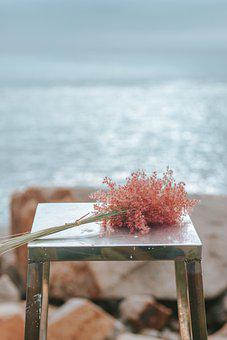 Flowers, Chair, Coast, Seaside, Sad, Lonely, Closeup
