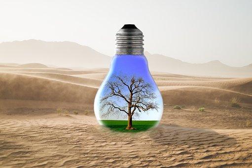 Desert, Tree, Grass, Sky, Lightbulb, Fantasy, Sand
