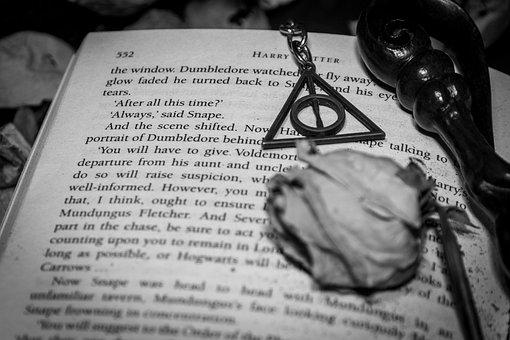 Novel, Story, Flower, Wand, Harry Potter, Magic