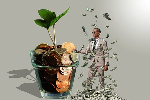 Money Rain, Money Tree, Marketing, Nature, Fun, Grow