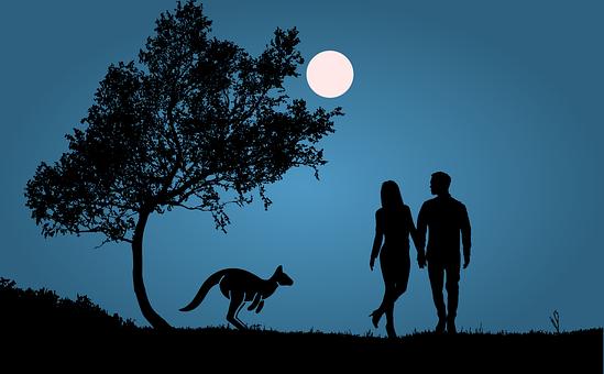 Night, Full Moon, Kangaroo, Couple, Romantic, Pair