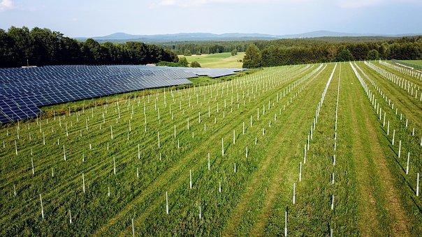 Solar Power Plant, Solar Modules, Power Supply