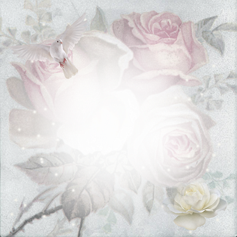 Roses, Flowers, Dove, Stationery, Bloom, Scrapbook
