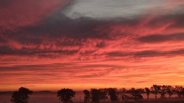 Sky, Sunrise, Field, Fog, Trees, Foggy, Clouds, Cloudy
