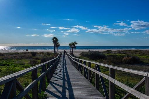 Palms, Sea, Sun, Nature, Sky, Waves, Sand, Costa
