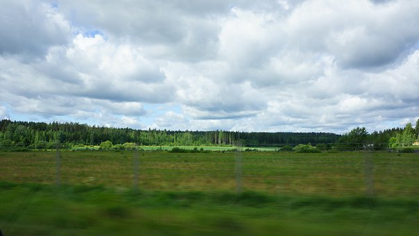 Finnish, On The Road, Green, Fields, Forest, Clouds