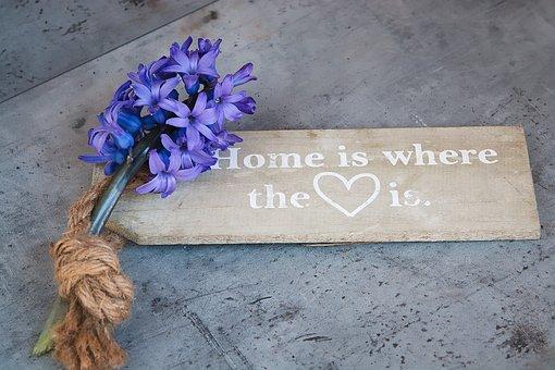 Hyacinth, Blue, Blue Flower, Fragrant Flower