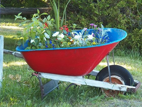 Wheelbarrow, Flower, Flowers, Garden, Flower Garden