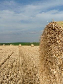 Straw Bales, Stubble, Harvest Time, Round Bales
