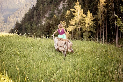 Person, Human, Child, Girl, Wheelbarrow