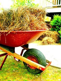 Wheelbarrow, Outside, Outdoor, Equipment, Pine Straw