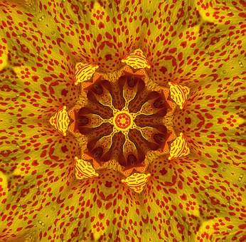 Kaleidoscope, Picture, Transformation, Texture, Form