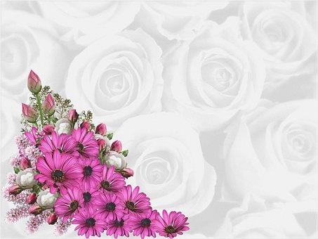 Background, Digital Paper, Scrapbooking, Flowers, Roses