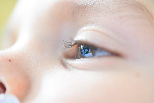 Baby, Child, Boy, Play, Childhood, Eye, Face, Portrait