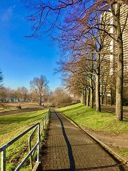 Wasser, Rhein, Köln, Fluss, Natur, Diearchitektur