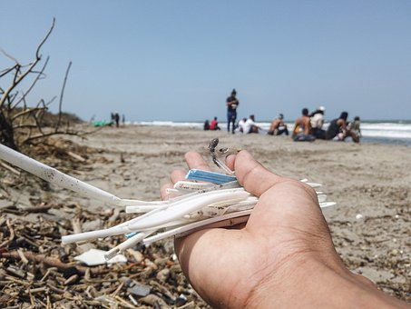 Beach Cleaning, Eco-friendly, Eco-sustainable, Straws