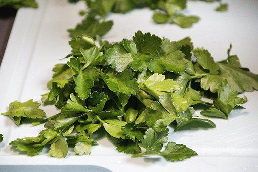 Basil, Herbs, Food, Leaves, Spice, Organic, Natural