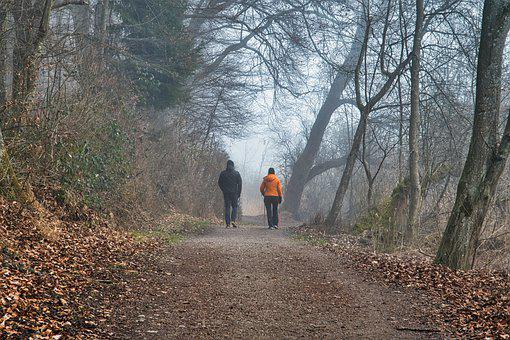 Forest, Trail, Walk, People, Trekking, Hiking