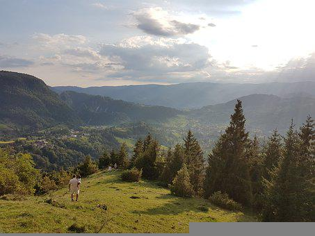 Nature, Mountains, Walk, Jogging, Silence, Relax