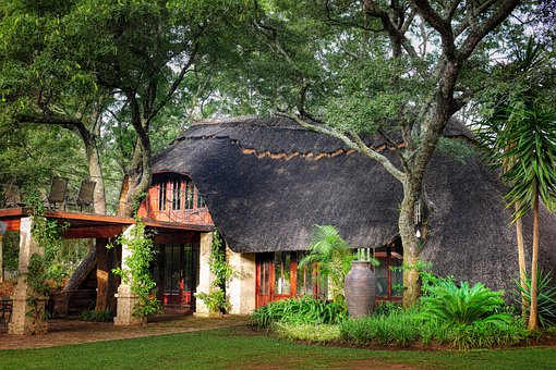 House, Villa, Forest, Manor House, Thatched Roof