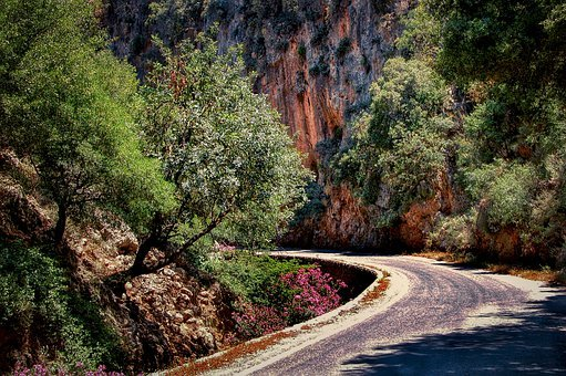 Road, Trees, Mountain, Curve, Path, Gorge, Canyon