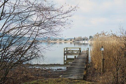 Jetty, Lake, Reed, Grass, Bank, Pier, Dock, Boardwalk