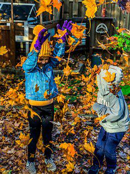 Kids, Family, Children, Fall, Playing, Leaves, Siblings